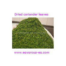World Hot Sales Export Black Coriander Seed With Reasonable Price