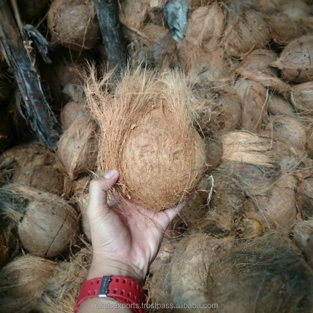 China Coconut Supplier, Cheap Price & Good Quality Coconut
