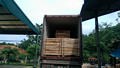 Acacia Sawn Timber/ Wood Timber