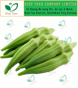 HOT SELLING FRESH VEGETABLES LADY FINGER, FRESH OKRA