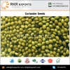 Wholesale Supplier of Green Coriander Seeds at Low Price