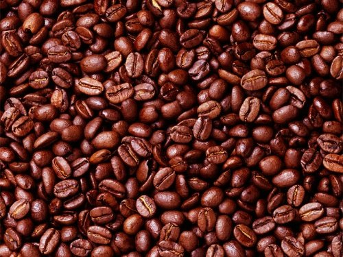 High Quality Arabica Coffee Beans