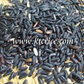 Thai Black Glutinous Rice