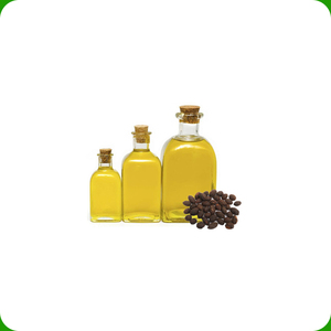 Pure Saw Palmetto Plant Extract Oil 95% Fatty Acid for Sale