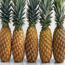 Pineapples / Sweet Fresh Pineapples for Sale