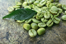 Robusta Plantation AAPB Coffee Bean For Best Price
