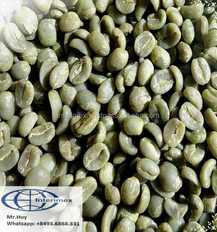 VIETNAM ROBUSTA COFFEE / COFFEE BEANS exporting (Whatapps: +84936868831)