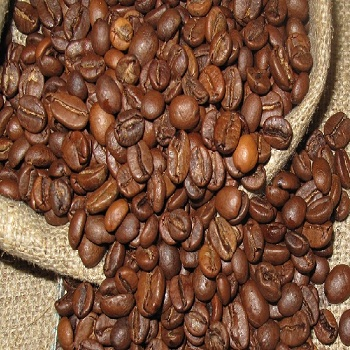 Best Price Quality Green Arabica Coffee from Brazil