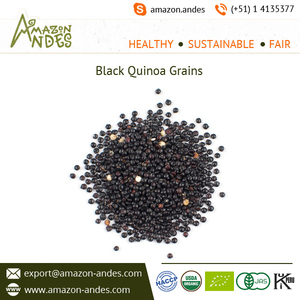 Conventional Whole Black Quinoa Grain