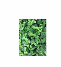 New crop high quality bulk fresh & Frozen vegetable broccoli for importers