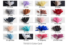 Rooster Coque Feather/ Rooster Tail Feathers