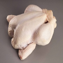 Brazilian Quality Halal Frozen Whole Chicken and Parts / Gizzards / Thighs / Feet / Paws / Drums