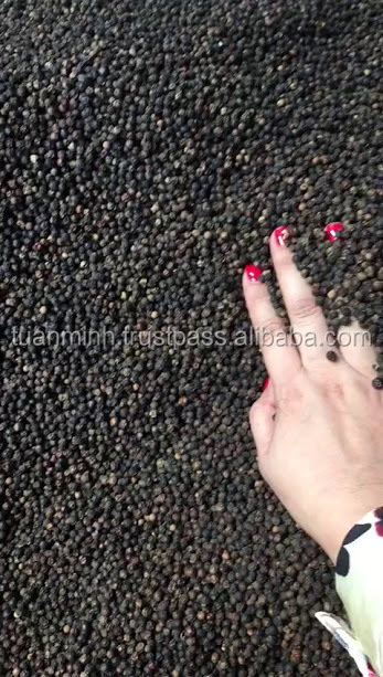 VIETNAM BLACK PEPPER ASTA QUALITY