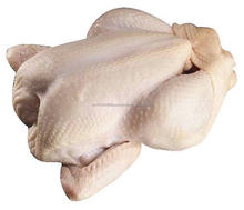 Halal Brazilan Frozen Whole Chicken / Chicken Feet / Wings and other Parts