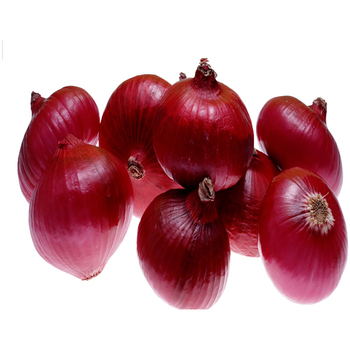 Best Supplier and Exporter From India of Onion
