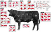 Beef Cuts, Products of United States, USDA Approved - Putting U.S. Meat on the World's Table