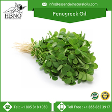 Pure & Natural Fenugreek Carrier Oil Price