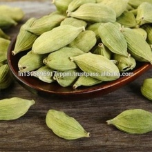 Natural Best Quality Indian Fresh Green Cardamom Elachi Spice for Wholesale