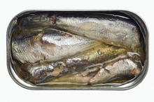 Canned Tuna,Canned Sardine in Vegetable Oil,Canned Fish