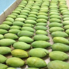 We sell Fresh Mangos /Fresh Whole Peruvian Kent FOR SALE