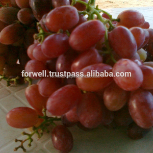 a crisp-juicy Crimson Grapes texture and an excellent from Egyptian Grapes Suppliers