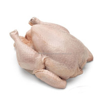 Chicken Quarter Legs and Whole Halal Frozen Chicken for Exports