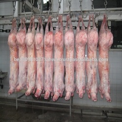 High Quality Halal Frozen Boneless Beef/Buffalo Meat for Export