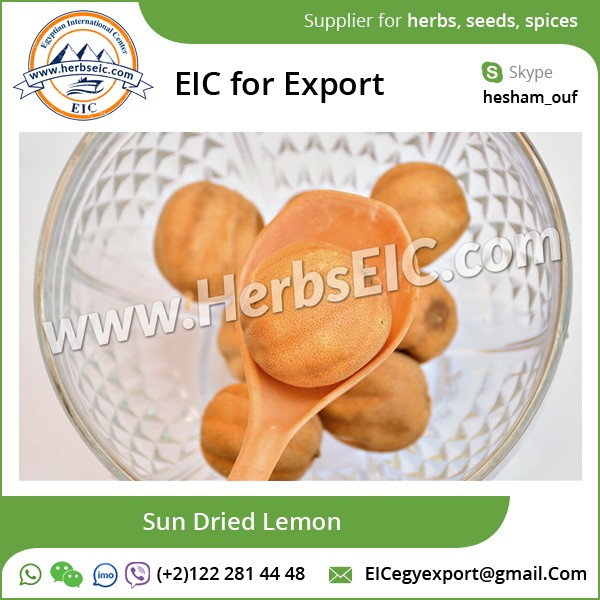 Tasty Dried Tangy Lemon/ Sun Dried Lemon at Affordable Bulk Price