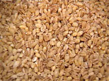 Grain Barley for malt / Barley feed / Barley Grain