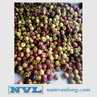 MANGOSTEEN WITH HIGH QUALITY AND COMPETITIVE PRICE