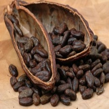 organic cacao/cocoa beans/nibs/pods from farm low pricee