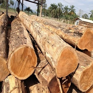 Teak Wood Round Logs For Sale