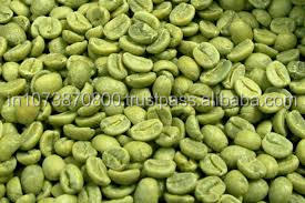 Indonesia Green coffee Robusta cherry