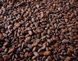 Grade A Cocoa Beans from Ivory Coast