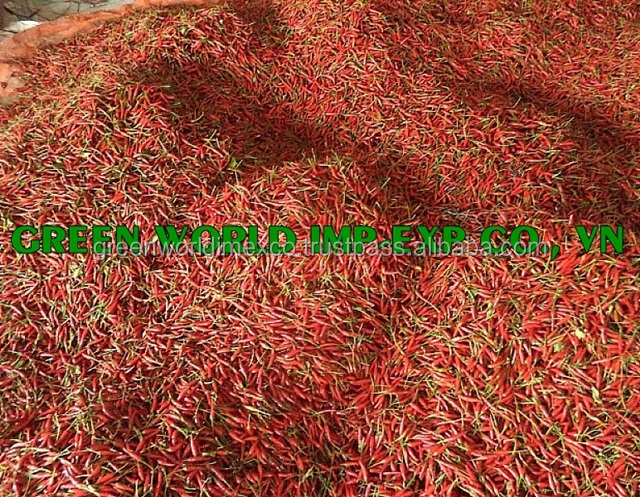 DRIED CHILI FROM VIET NAM