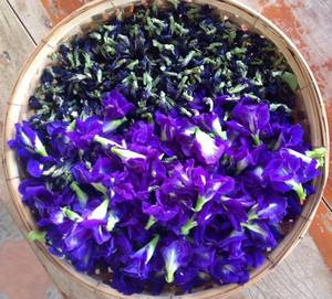 Dried Flower Flavor Tea Butterfly Pea Flower Blue Natural colouring (Thailand Herbal) Organic100% Non-GMO