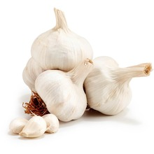 Fresh single clove garlic, one head garlic for sale