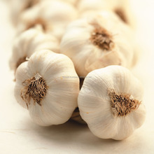 unpeeled fresh Normal white garlic from Egypt , cheapest prices all sizes