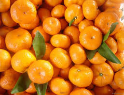 fresh and delicious Nanfeng tangerine