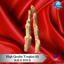 High Quality Malaysia Natural Yellow Tongkat Ali