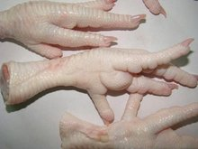 Halal frozen chicken Paws for Sale!!! Grade A