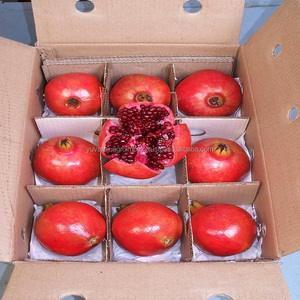 Today Price Sale for Fresh Pomegranate