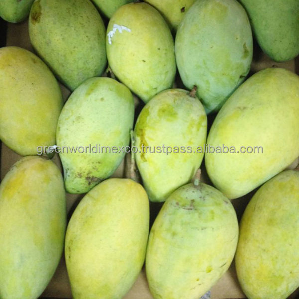 QUEEN OF TROPICAL FRUIT: IQF, FROZEN MANGO - HOT PRODUCT WITH BEST PRICE