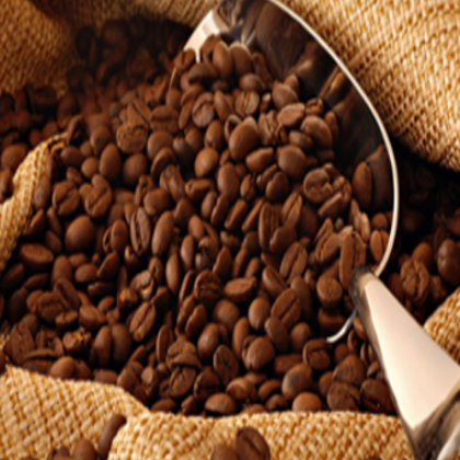 Wholesale robusta coffee bean price With the Best Quality and price