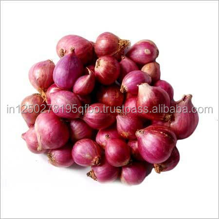 Bangalore Rose Onion from India in cheap rate