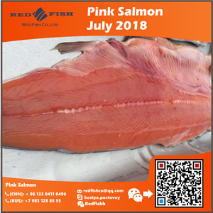 The best price Chum Salmon fillets skin on for Asia by red Fish Co.