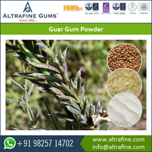 Natural Guar Gum Powder 5000 cps in food/cosmetic/oil drilling Hot sell