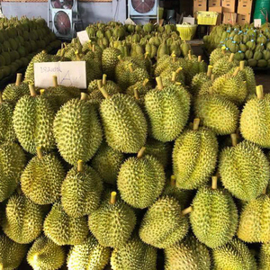 The Best Quality & Price Fresh Durian