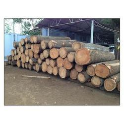 High quality Timber Wood Logs