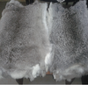 /product-detail/chinchilla-rabbit-skin-pelt-high-quality-soft-skin-up-to-45-cm-length-in-all-natural-colors-50039399643.html